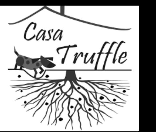 casa+truffle_grayscale@2x.png