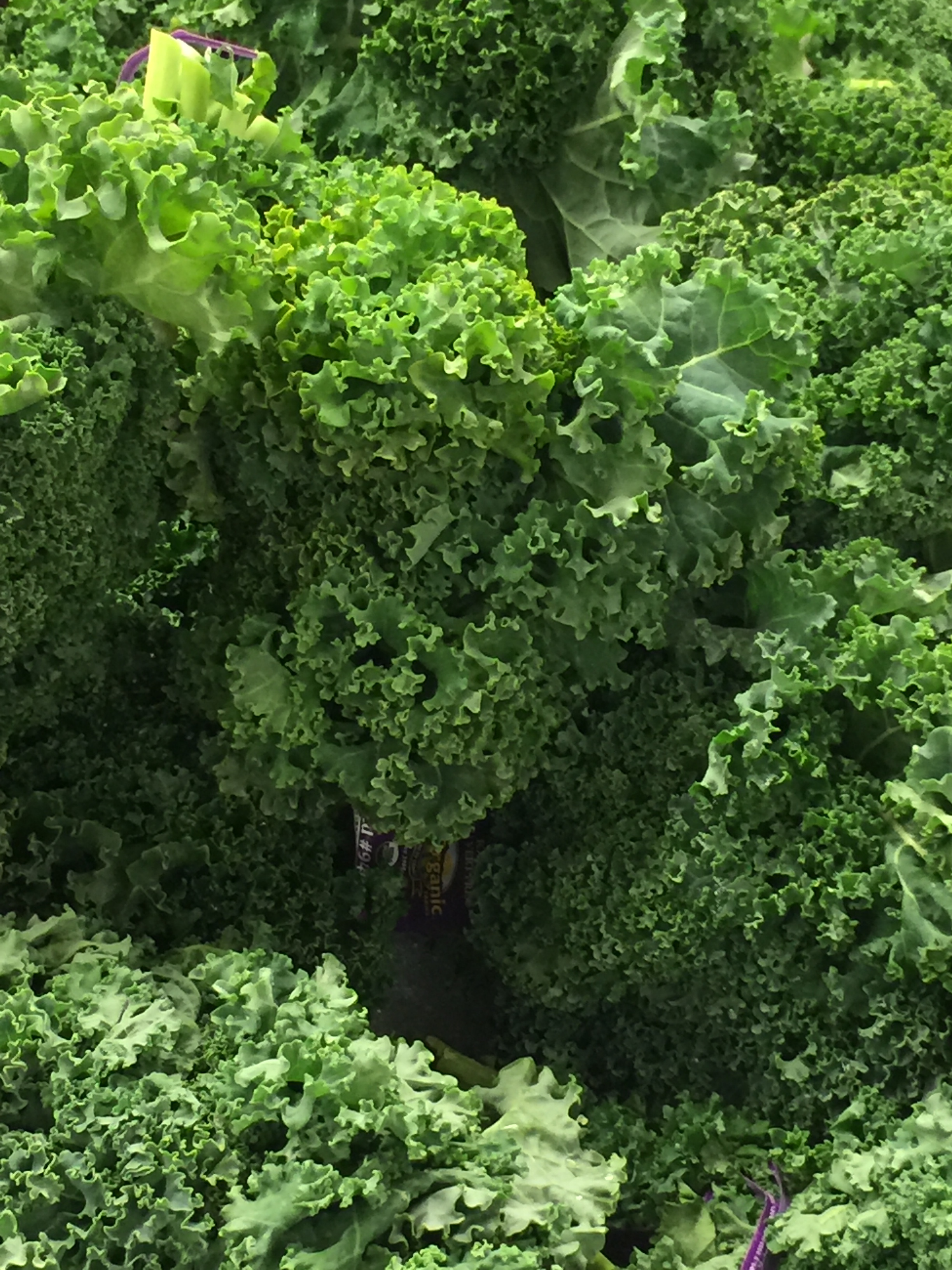 Green Vegetable -Naturally low in fat and calories