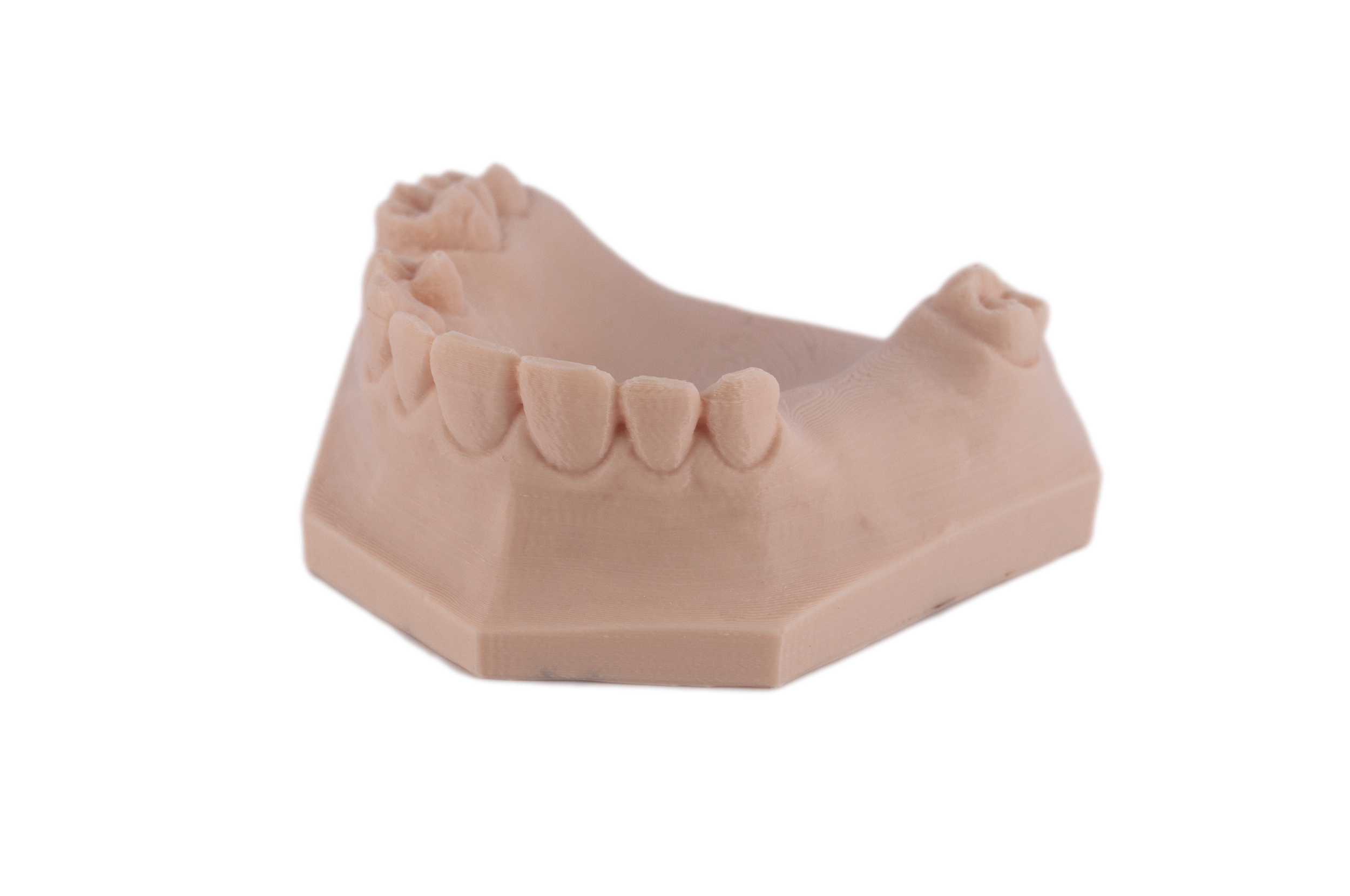 Arfona Dental Model.png