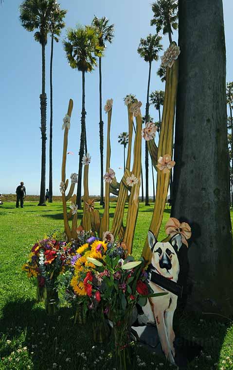 CactusHomlessMemorial.jpg
