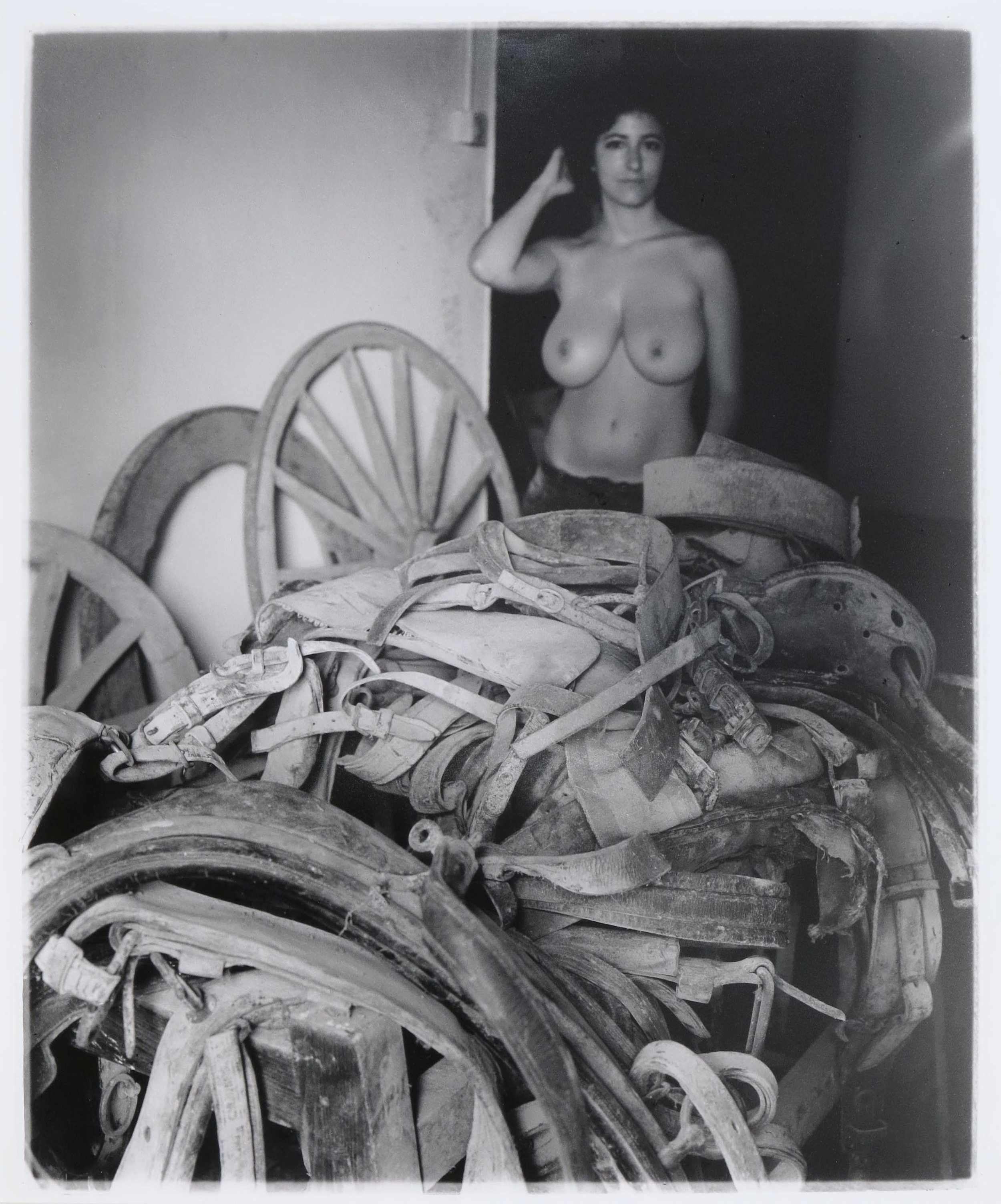 The Muse of Harnesses  2014  gelatin silver print  20 x 24 inches