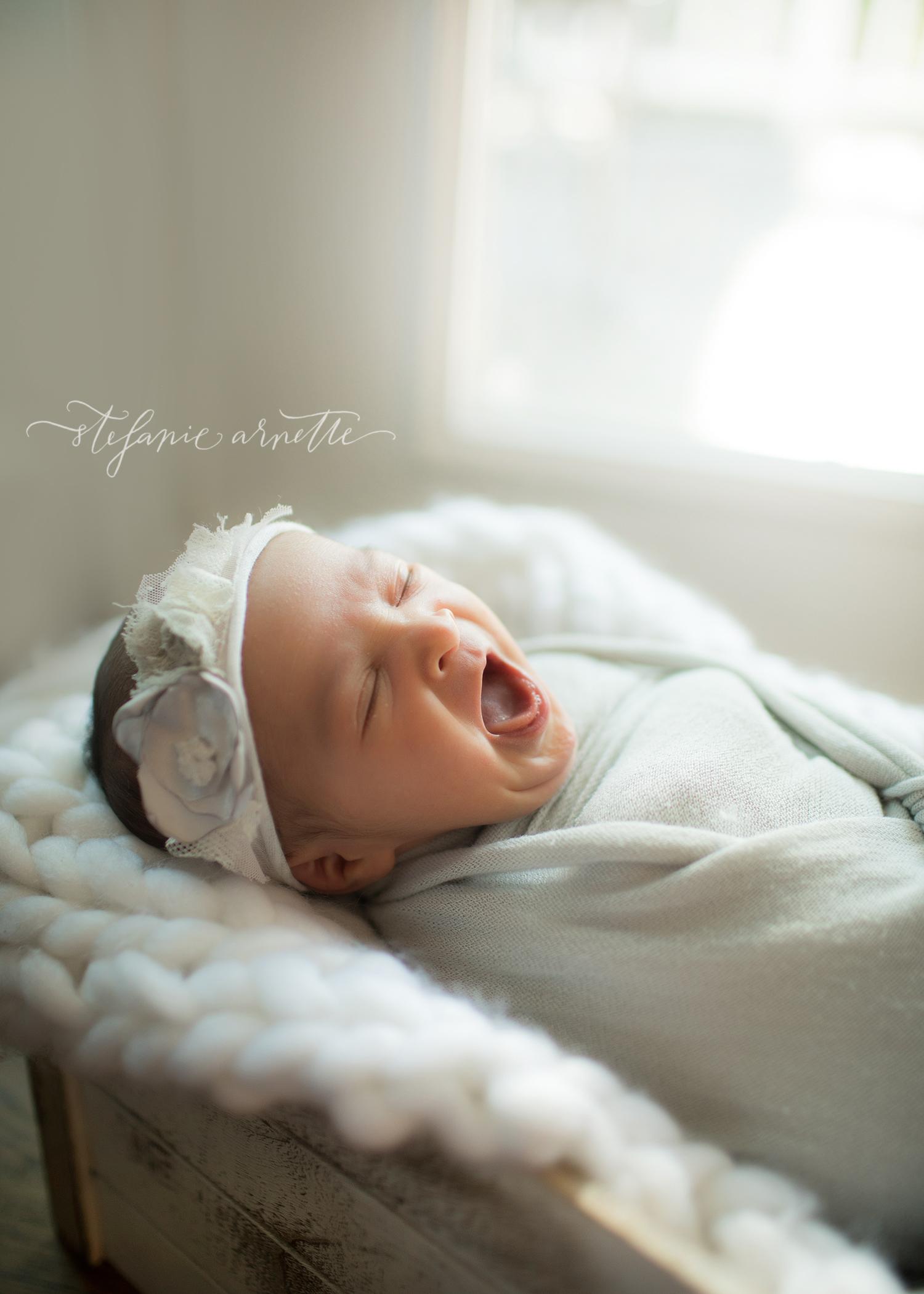 newborn (25).jpg