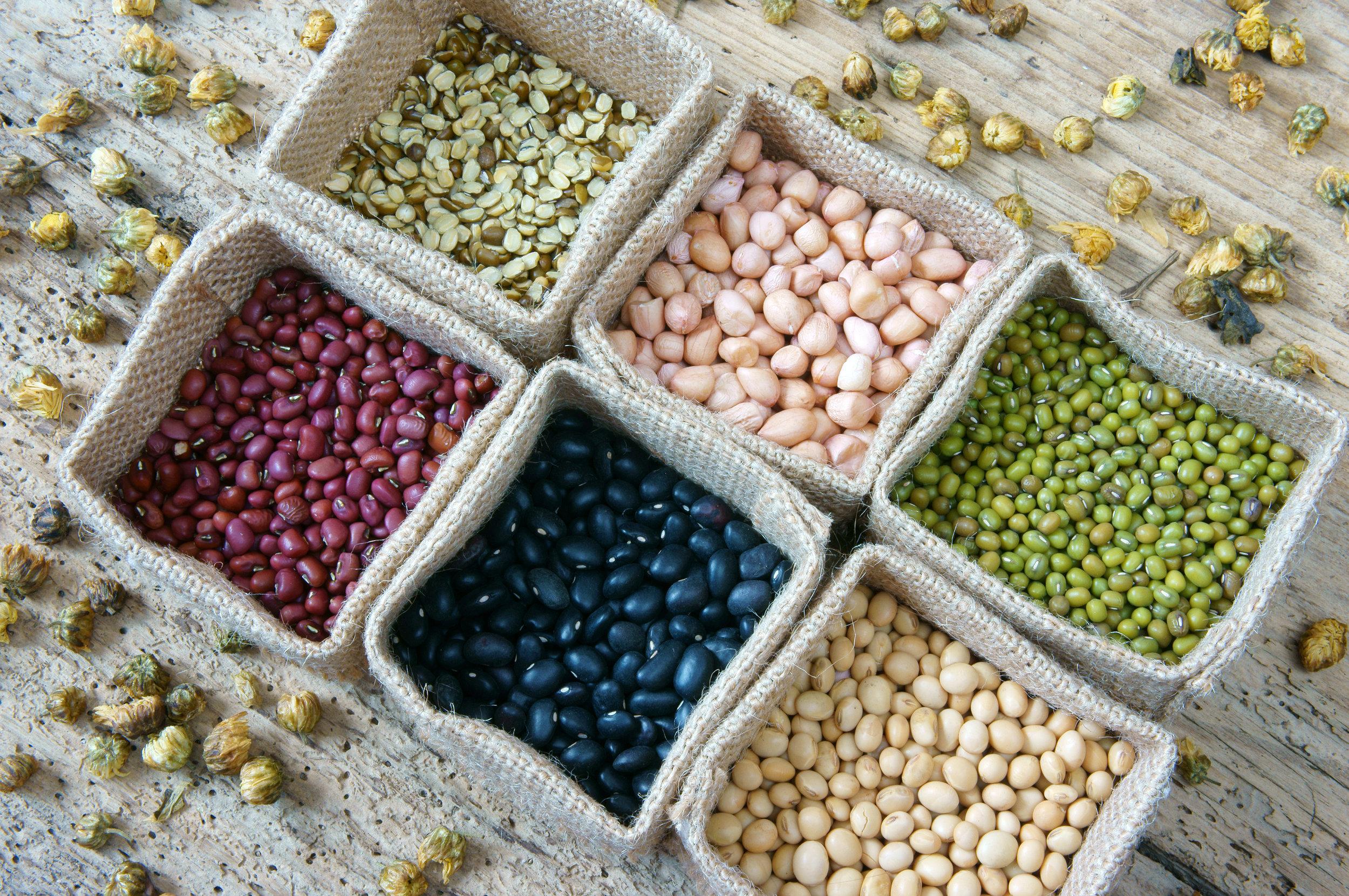beans of cuteness.jpg