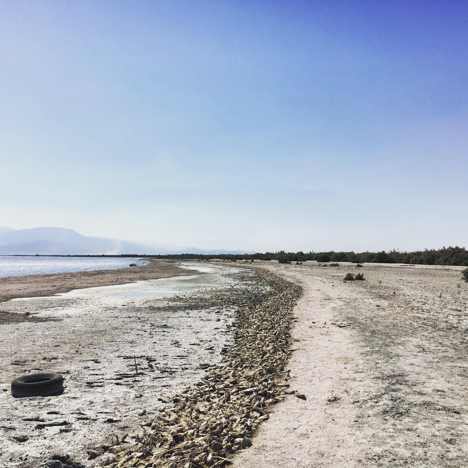 The Salton Sea, one of the least fresh places in California.