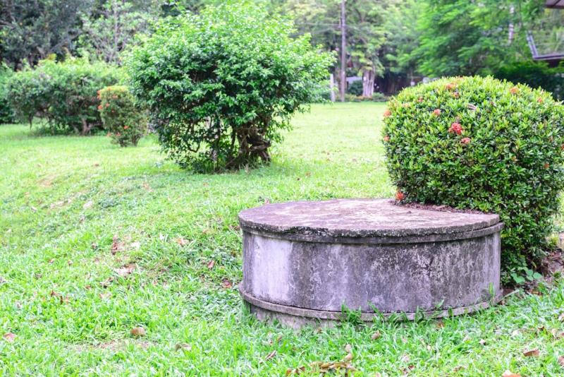 take care of septic tank.jpg