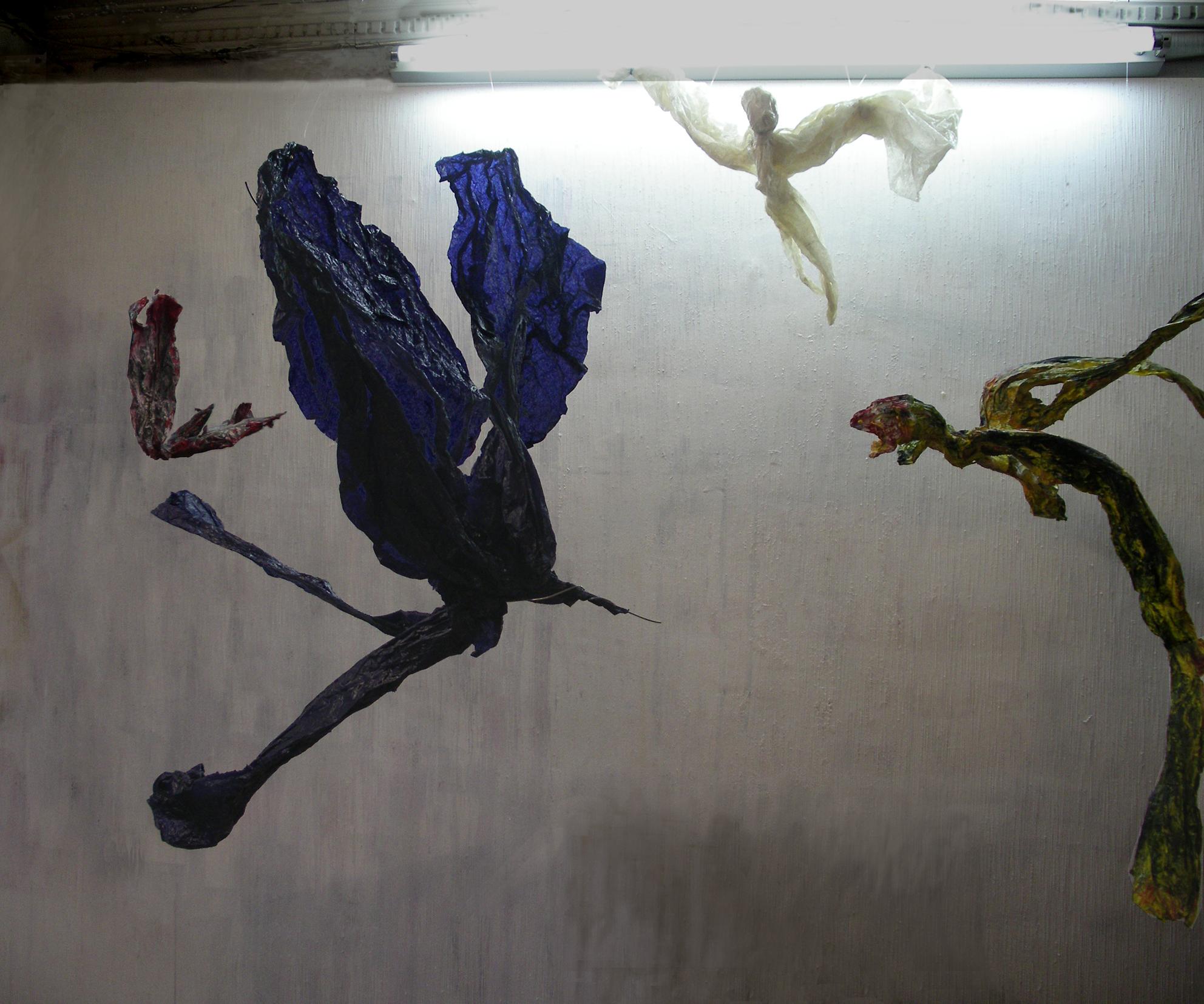 Combat d'oiseaux.jpg