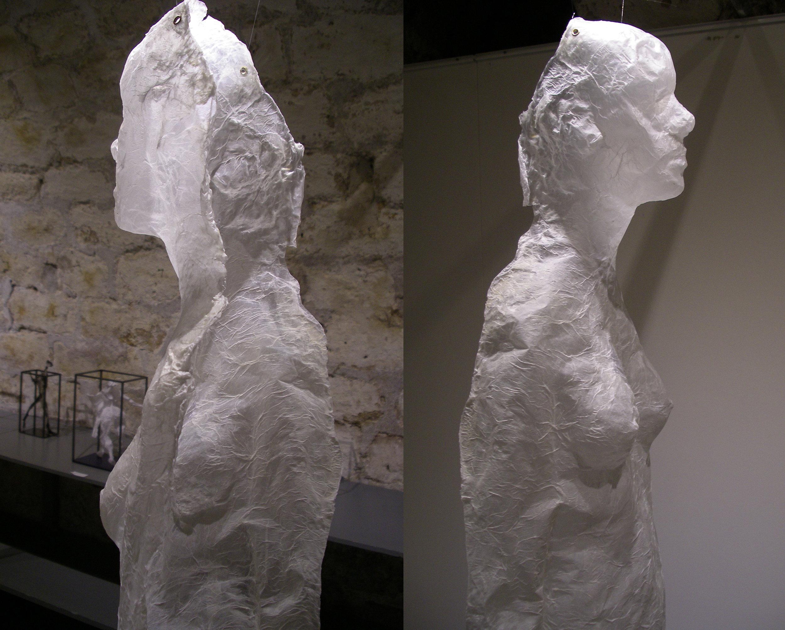 Mue d'Aphrodite dos et profil.jpg