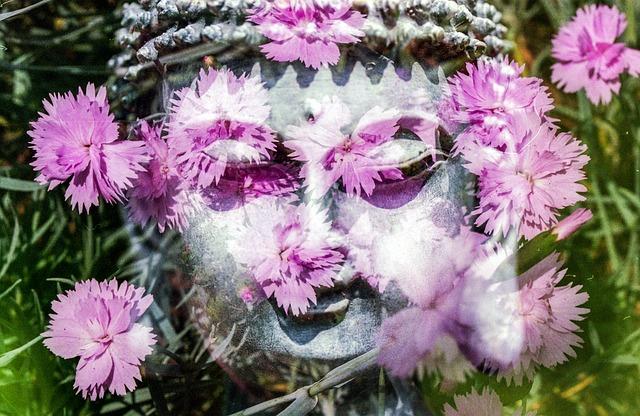 buddha-1280434_640.jpg