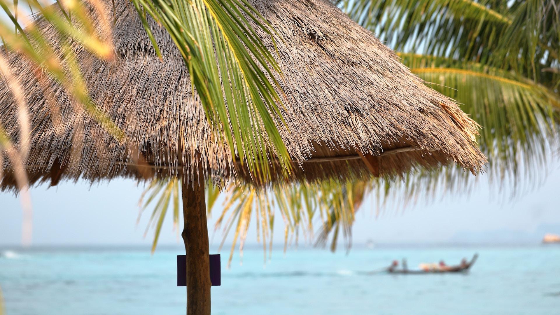 tiki hut with ocean in background.jpg