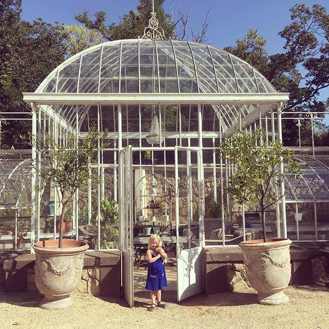 Greenhouse envy in the Languedoc ✨ This one's been turned into a stylee chill zone which was a bit 🔥🔥🔥but cld work well in 🇬🇧. Any excuse for more plants and some wicker chairs... #holidayinspo #plantlove #greenhouse #interiorinspo