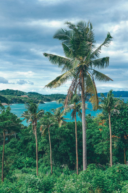 philippines scenery (96).jpg