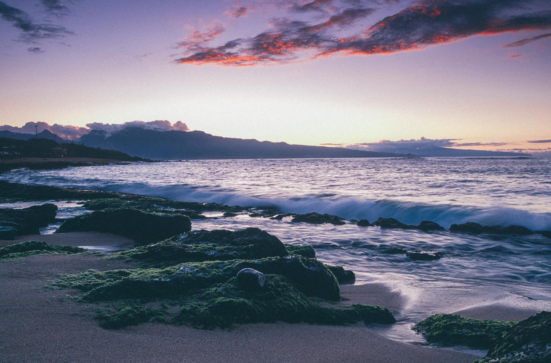 Hawaii (33).jpg