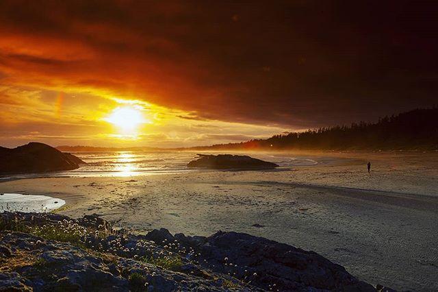Alone by the Sea part 7  #photography #photo #photooftheday #instapic #instagood #picoftheday #landscapephotography #landscape #beautifulbrithishcolumbia #sea #seaside #ocean #oceanview #nature #explorebc #destinationbc #canada #westcoast #pic #waves #pacificocean #hellobc #beach #happy #summer #sunset #tofino