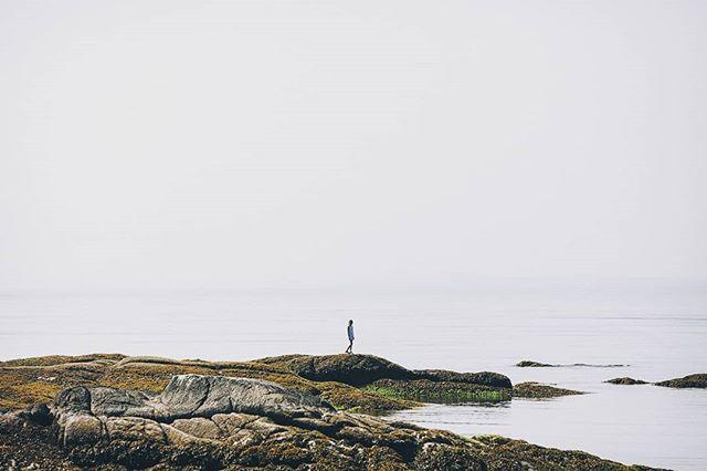 Alone at the sea part 3  #photography #photo #photooftheday #instapic #instagood #picoftheday #landscapephotography #landscape #beautifulbrithishcolumbia #sea #seaside #ocean #oceanview #nature #explorebc #destinationbc #canada #westcoast #pic #serenity #alone #explorecanada #vancity #vancouverphotographer #vancouver #yvr  #coast