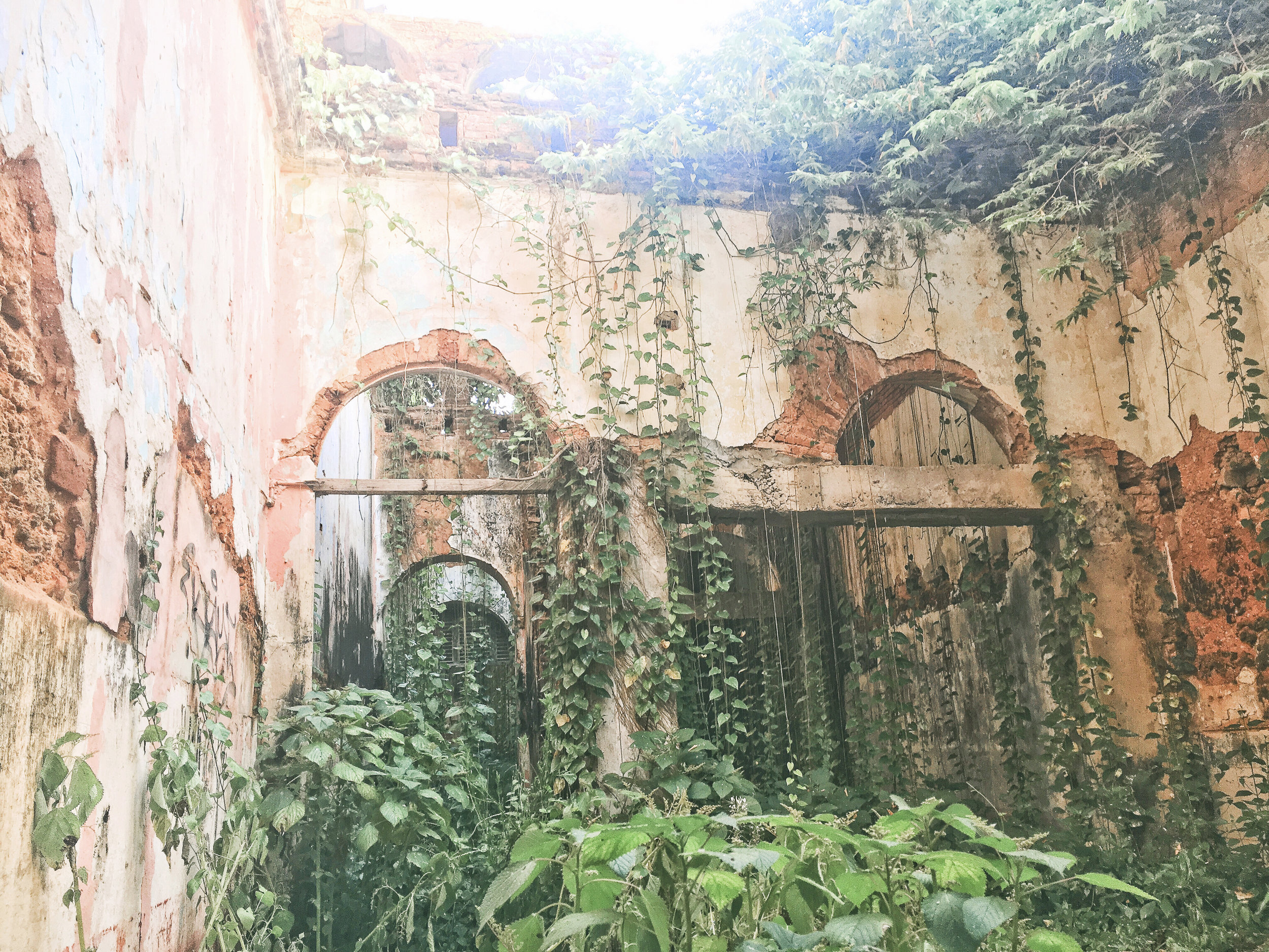 this is the inside of an abandoned apartment complex on a side street in old san juan. the windows were small so there was no way to see this from the outside (we held our phones through the windows to get these shots and luckily didn't drop them)