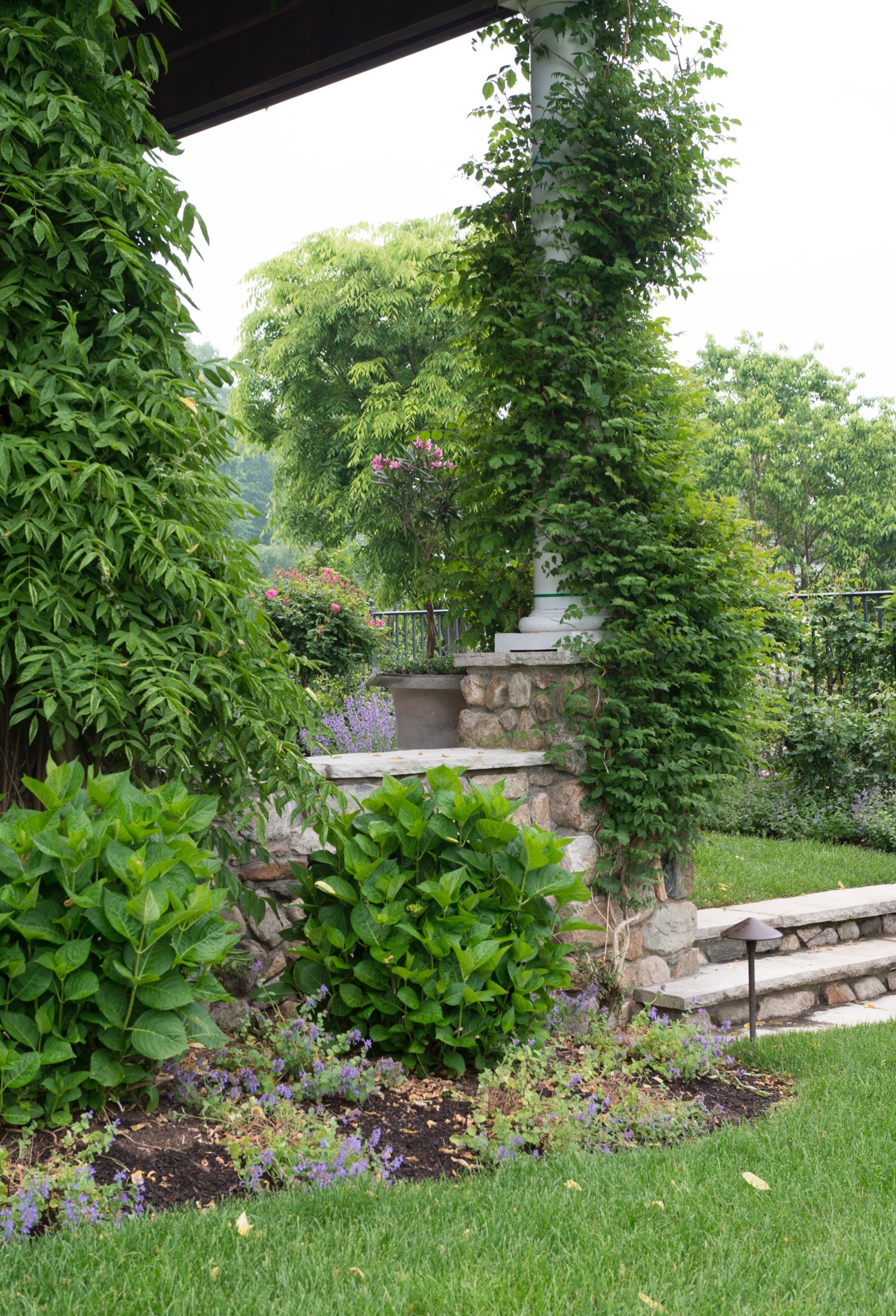 patio plantings1416.jpg