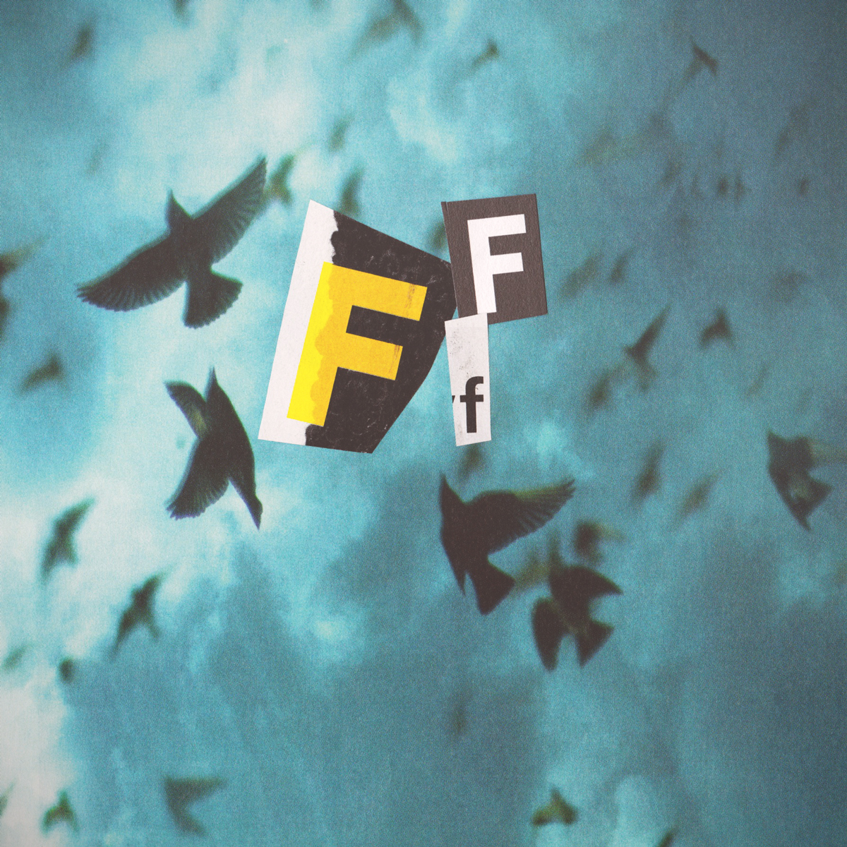 f_.jpg