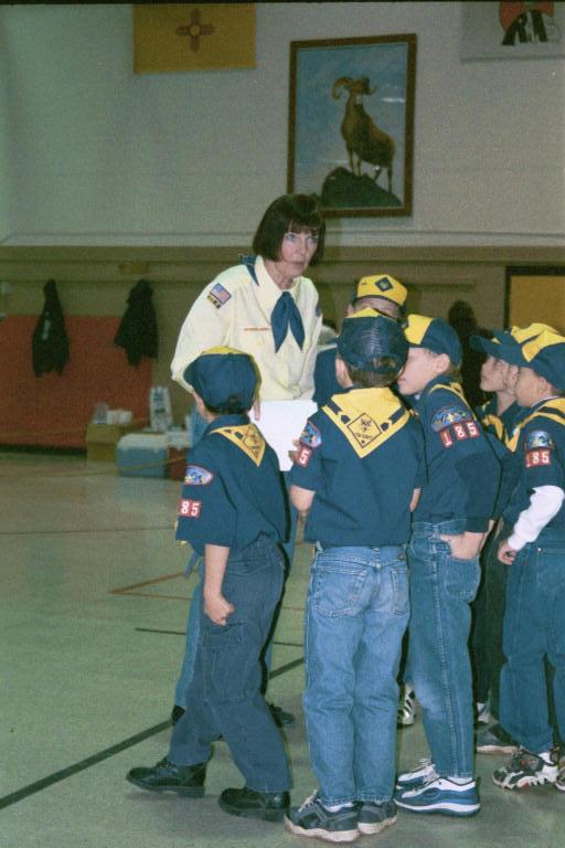 scout leader mom.jpg