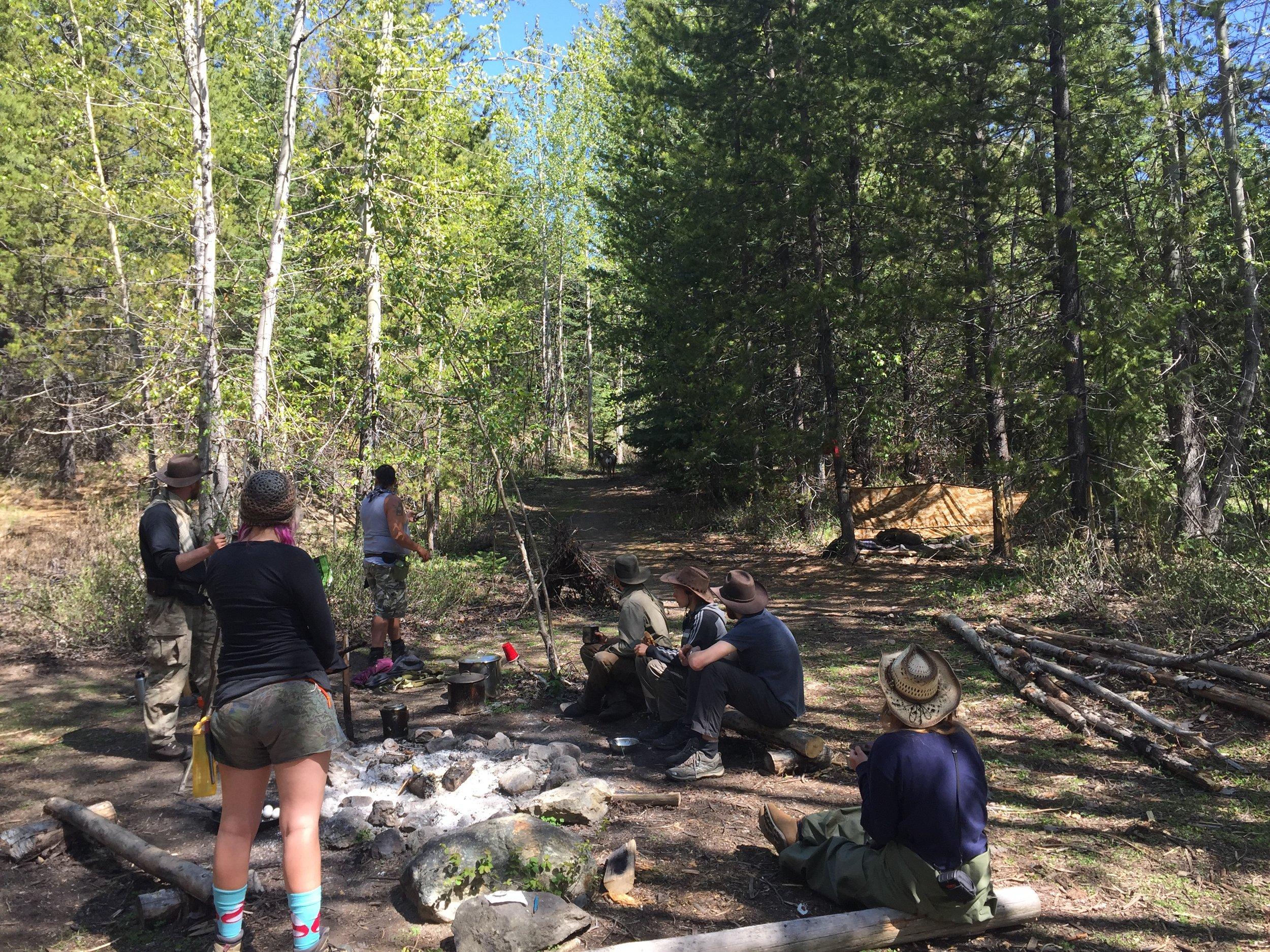 deer-in-camp