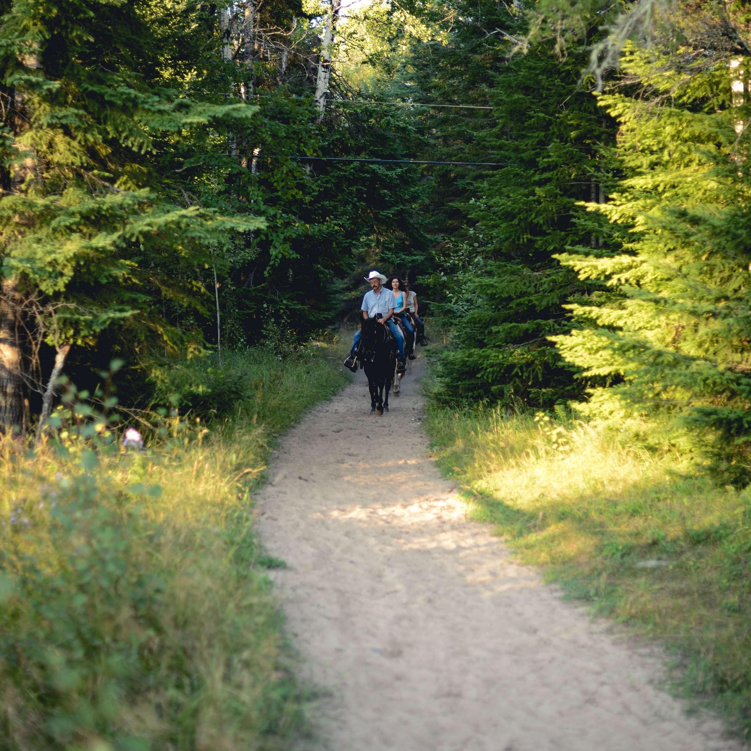 One-Hour Ride   This is our most popular ride, perfect for riders of all ages and abilities. Experienced guides match you with one of our well-trained horses and review basic horsemanship with each rider before leaving the Ranch. Once on the trail, relax and enjoy your horse and the beautiful boreal forest of the Whiteshell Provincial Park. All rides are grouped according to riding ability.  See rates  HERE .
