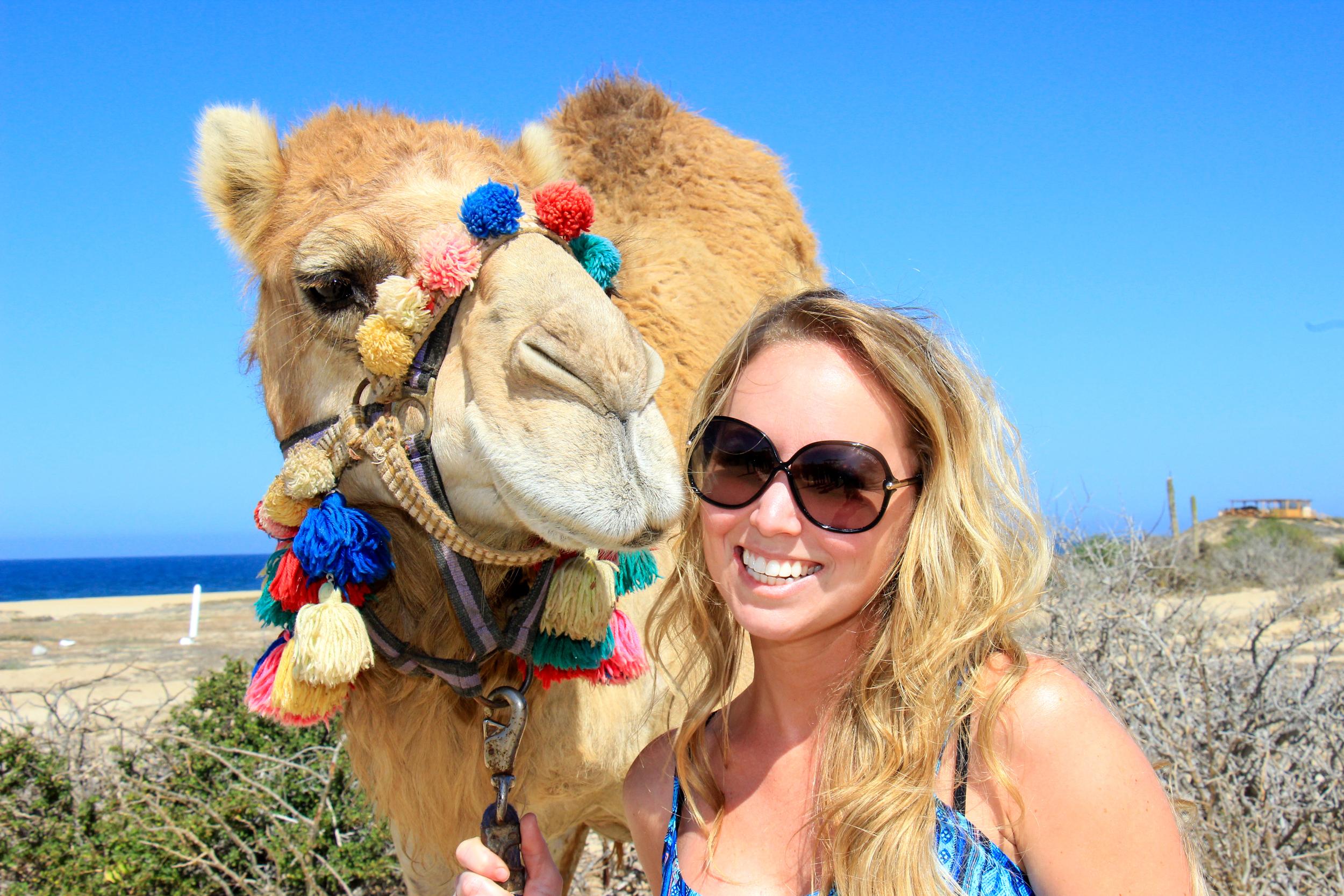 Camel Outback Safari