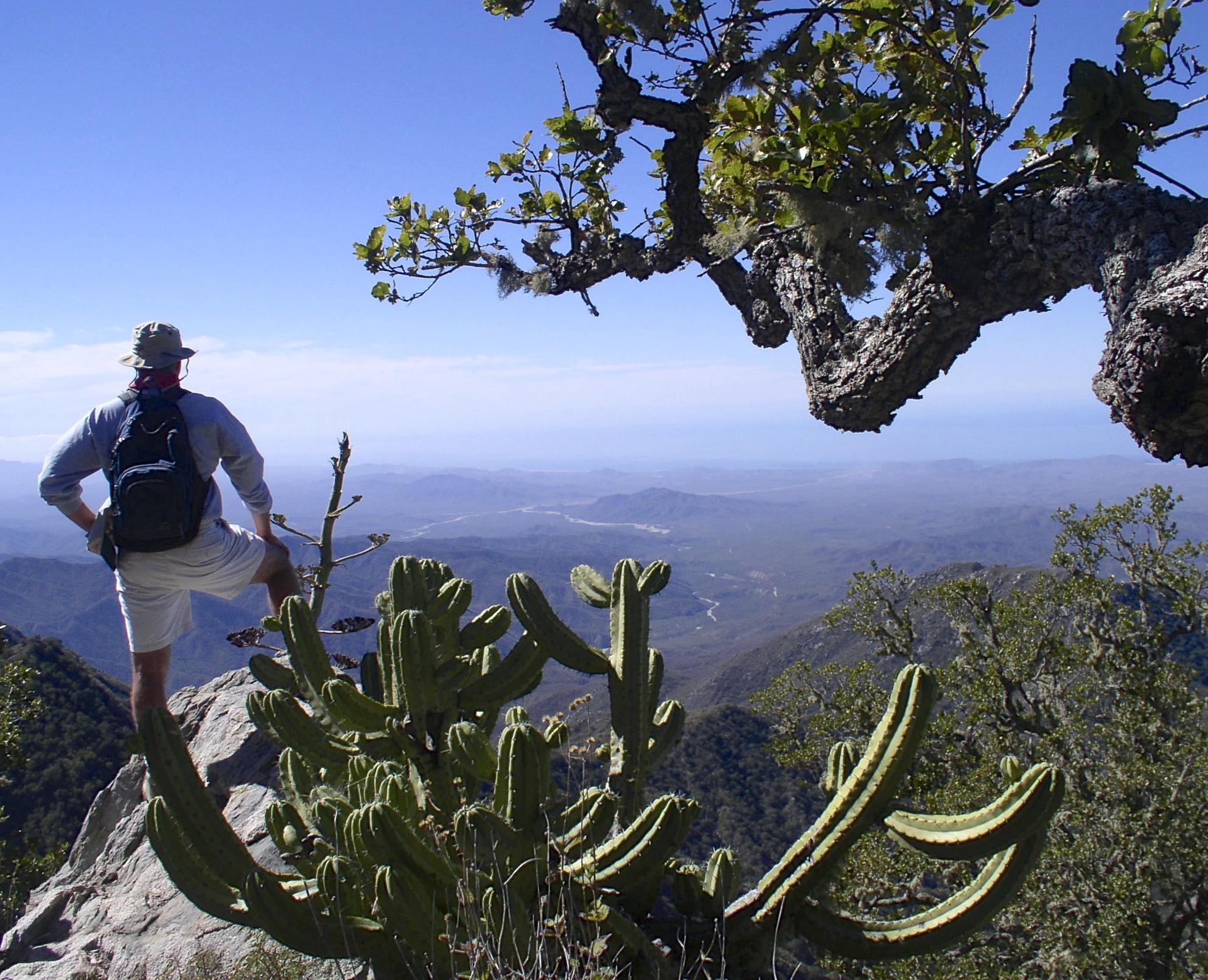 Sierra de la Laguna Treks