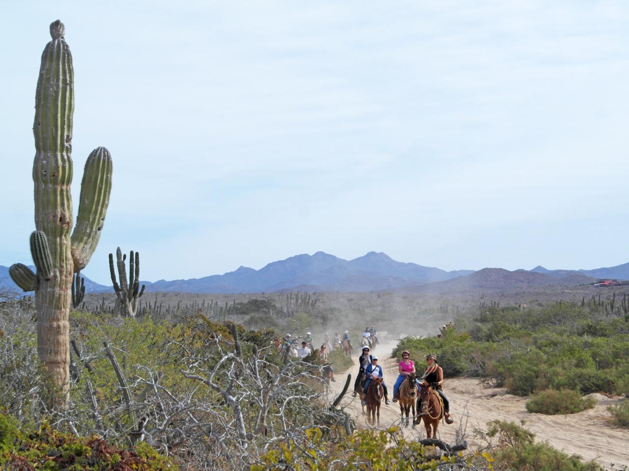horsebackride-tour.jpg