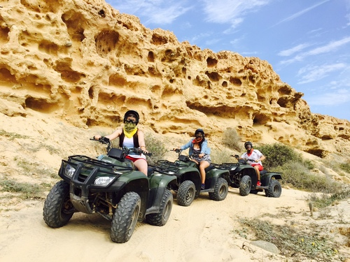 Land Excursions    Explore the beauty of baja on one of our land excursions. Call: 800-658-7599