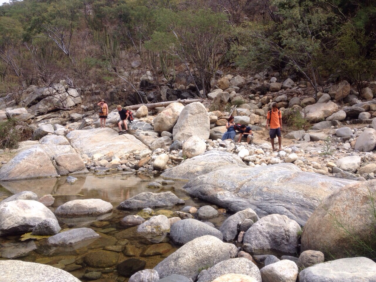Fox Canyon Hike   Explore nature in Baja - great hiking trails