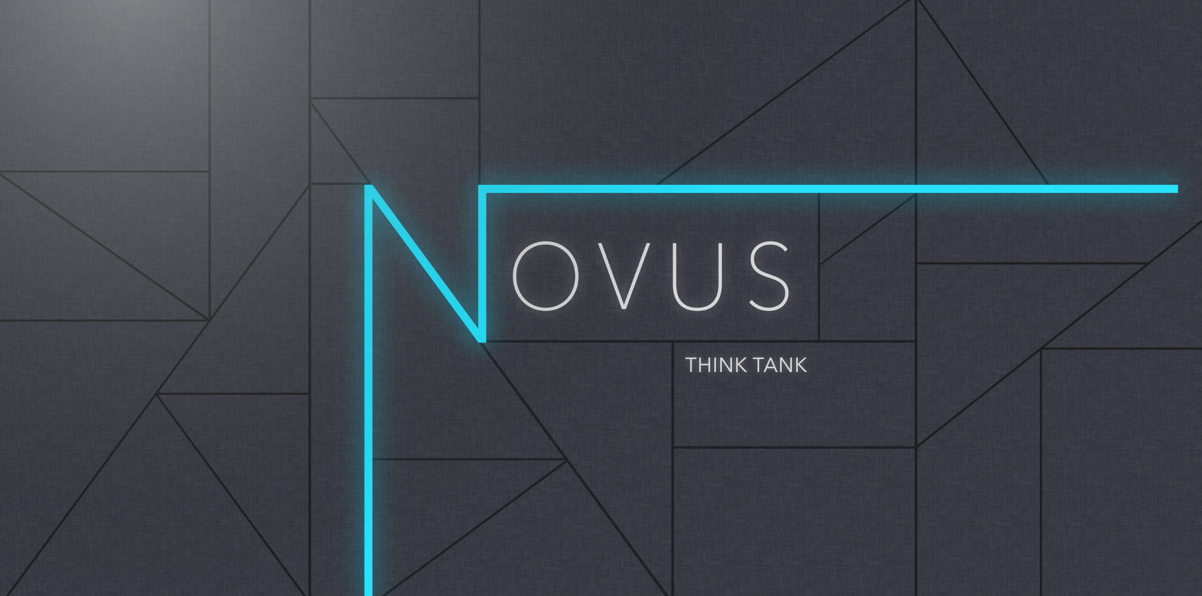 Novus Student Organization Logo [Joint Project]