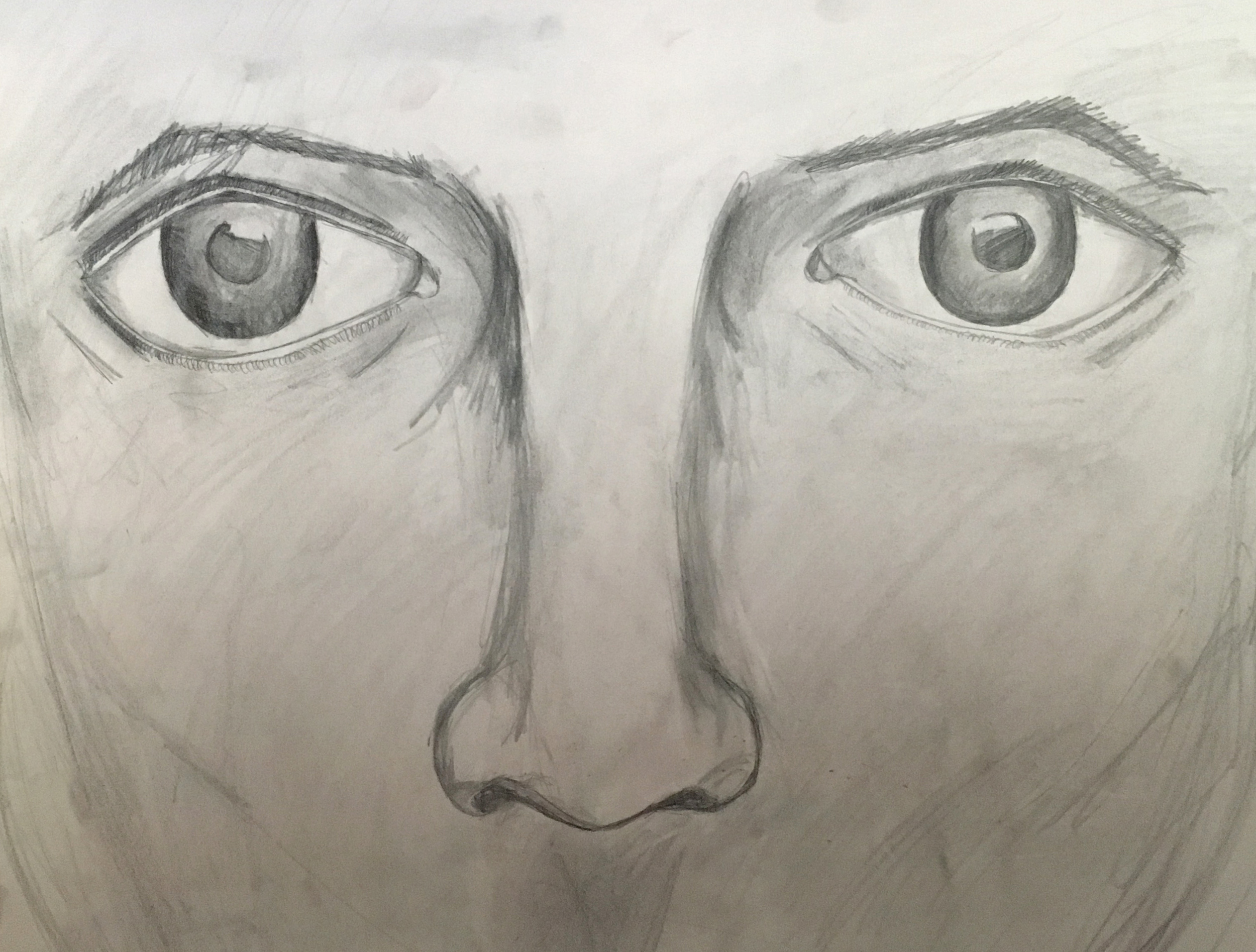 Eyes + Nose Study, Pencil, 11in x 17in