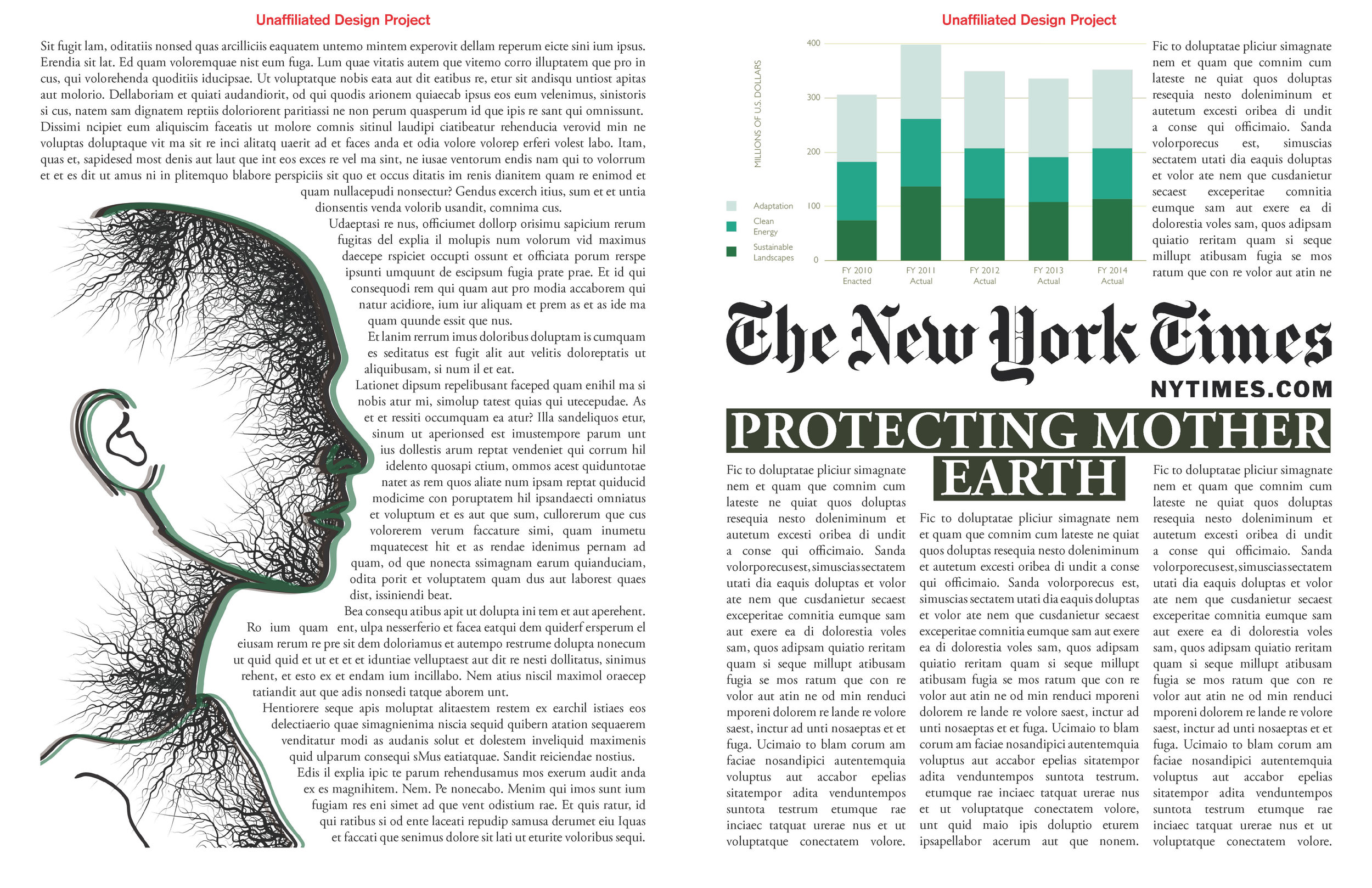 new york times_Page_3.jpg