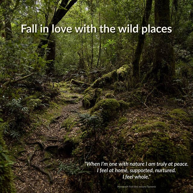 Connect with nature #fallinlovewiththewildplaces