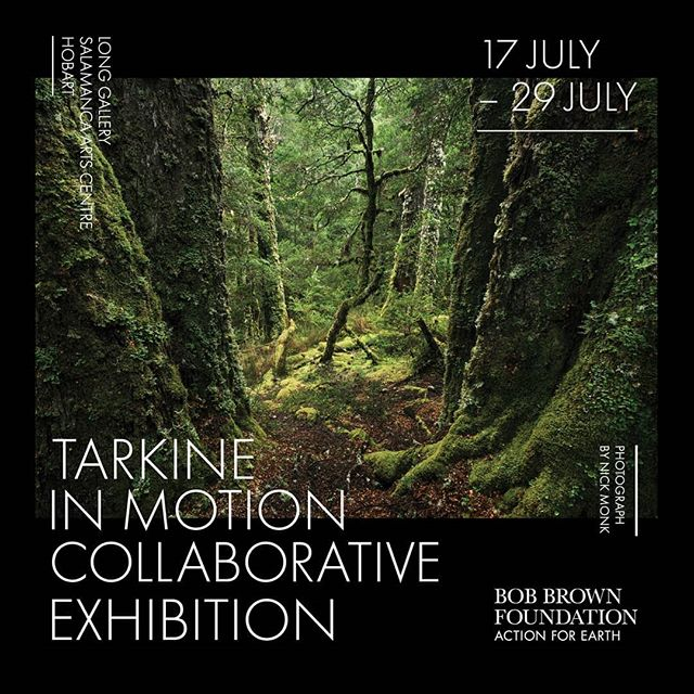 Tarkine in Motion Collaborative exhibition opens at the Long Gallery, Salamanca Place in Hobart Wednesday 17th July @riversongmusic . @mcdougall.wendy @melissablackmusic @bobbrownfoundation #longgallery #hobart #takayna #tarkineinmotion #environmentalart #fortheearth
