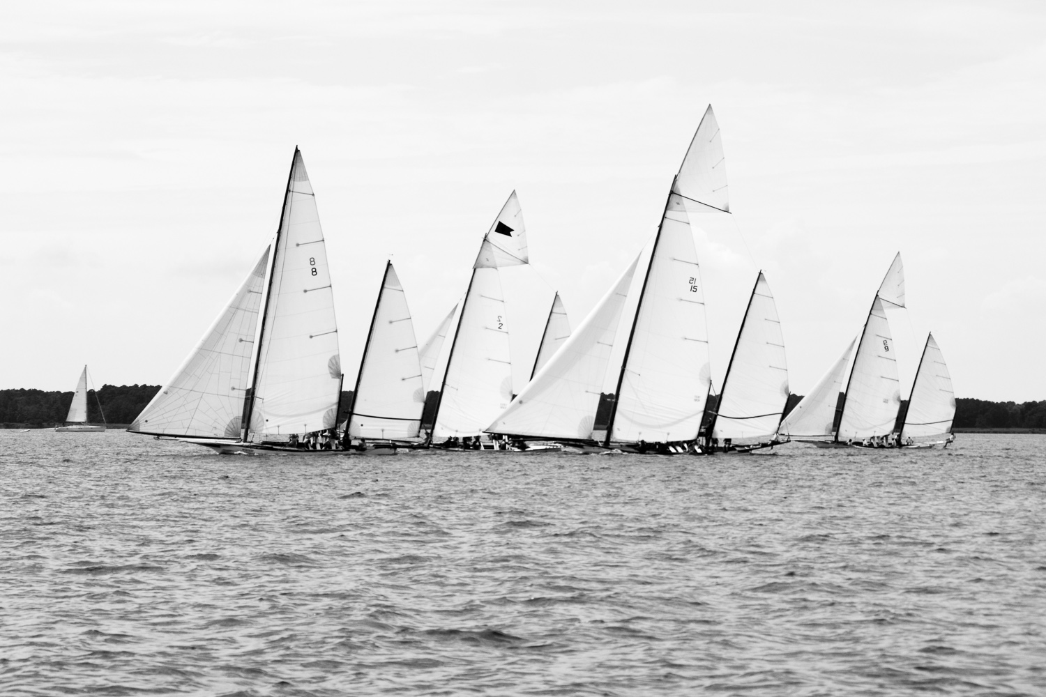 Log-Canoe-Race-at-Rock-Hall-Yacht-Club-July-2016-ss-10.jpg