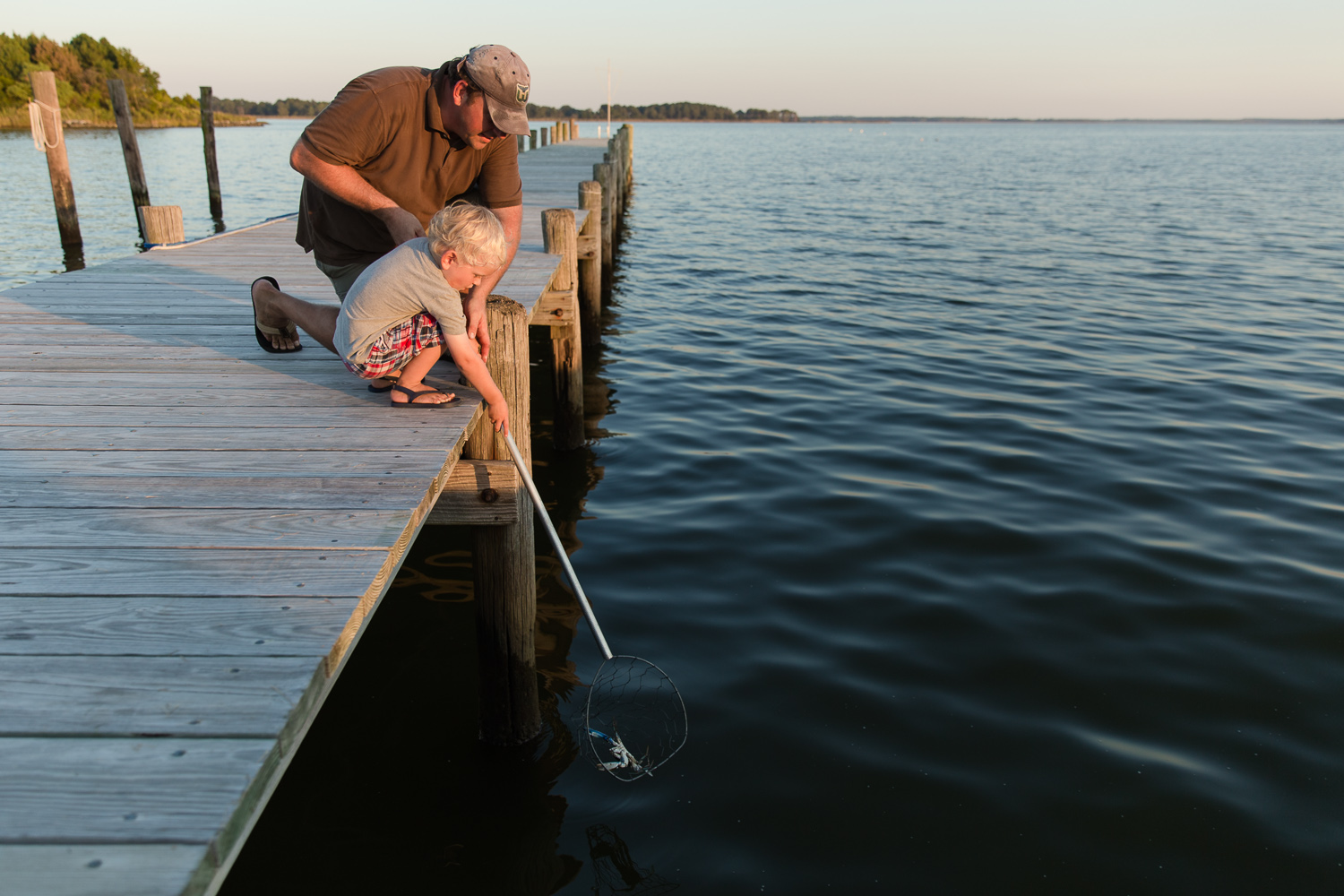 Using a net to catch Maryland Blue Crabs in Rock Hall