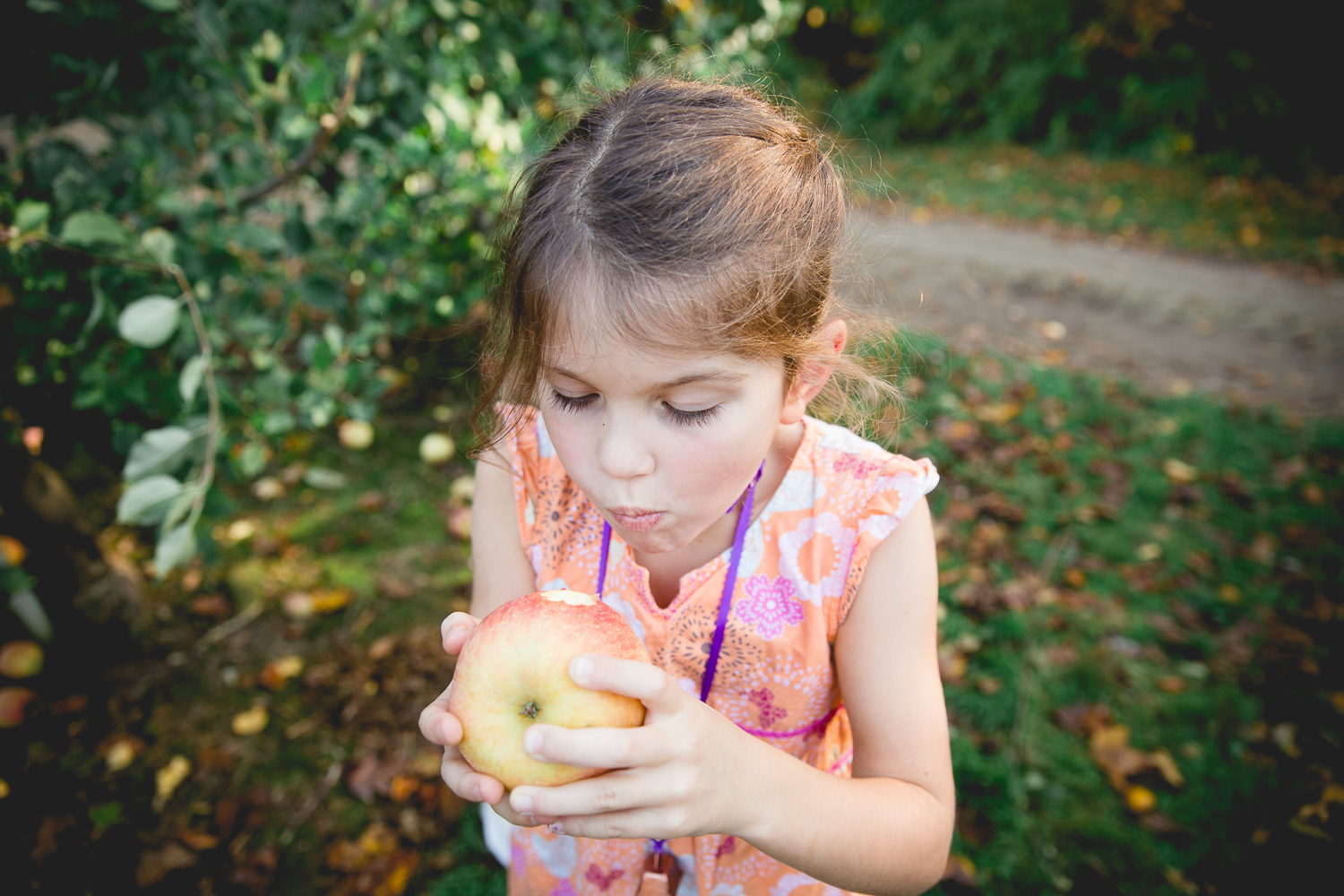 little girl takes her first bite of her pick your own apple