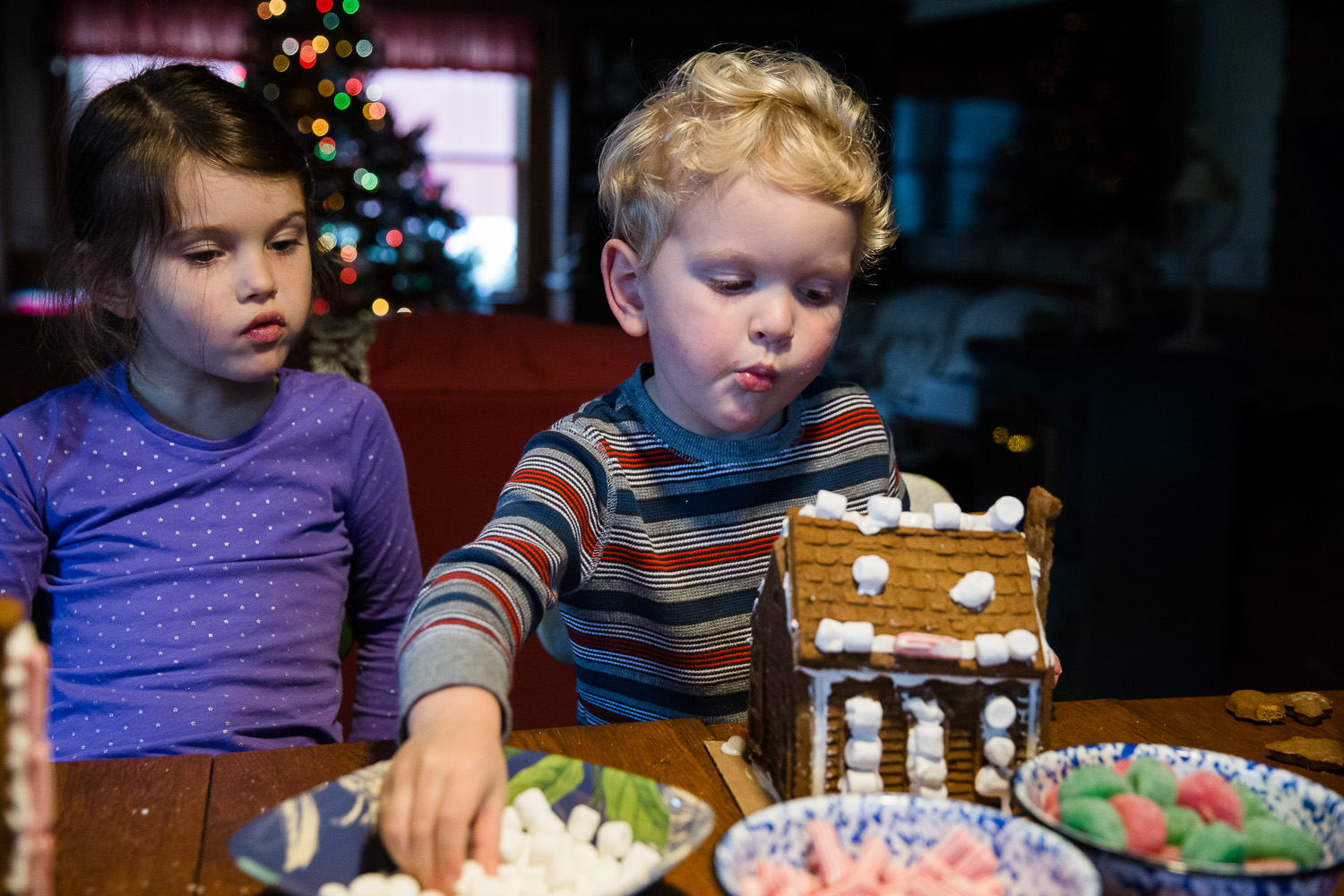 Little boy eats candy as he makes his gingerbread house.
