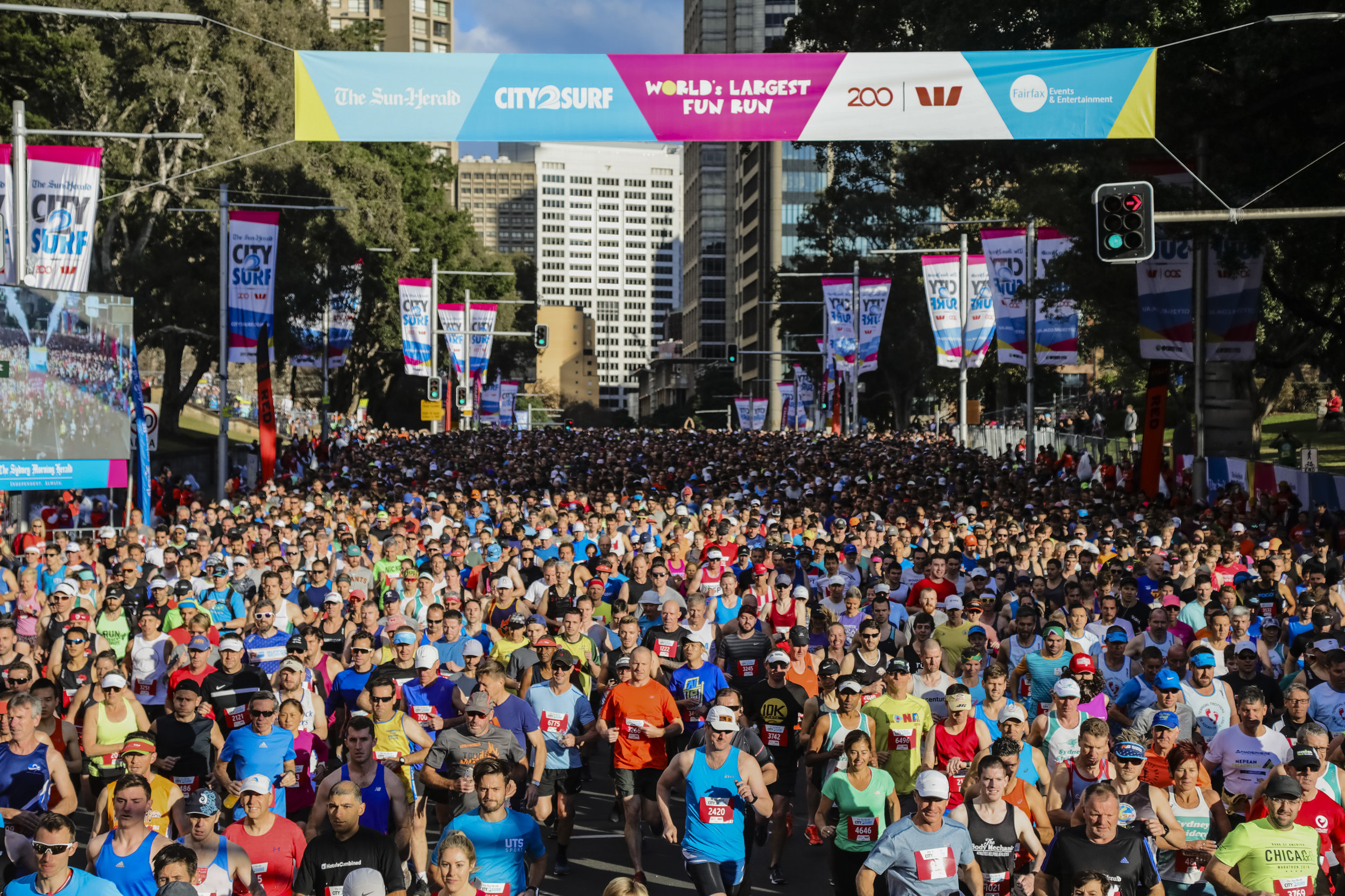 2018 Start Line at  The Sun-Herald  City2Surf presented by Westpac