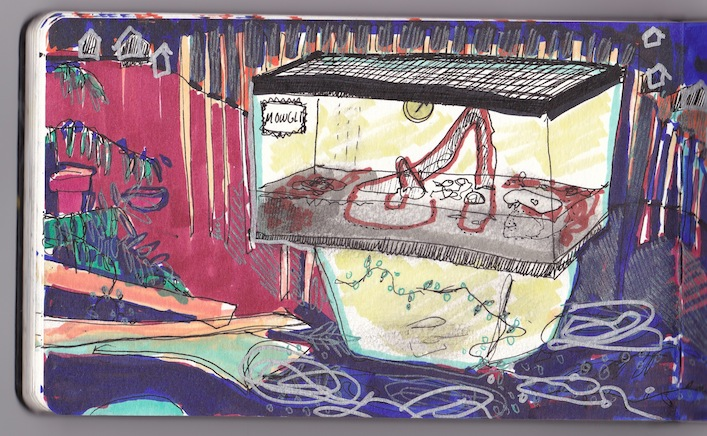 Cecilia's Dead snake tank, 2014