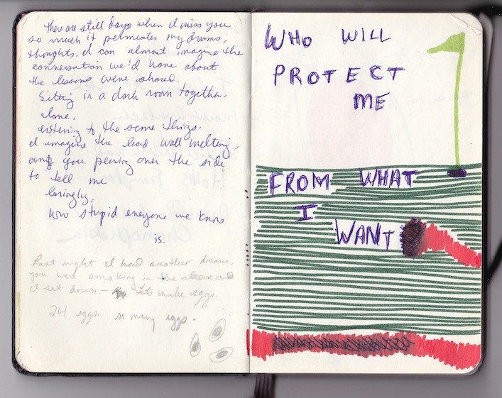 who will protect me from what I want, 2012