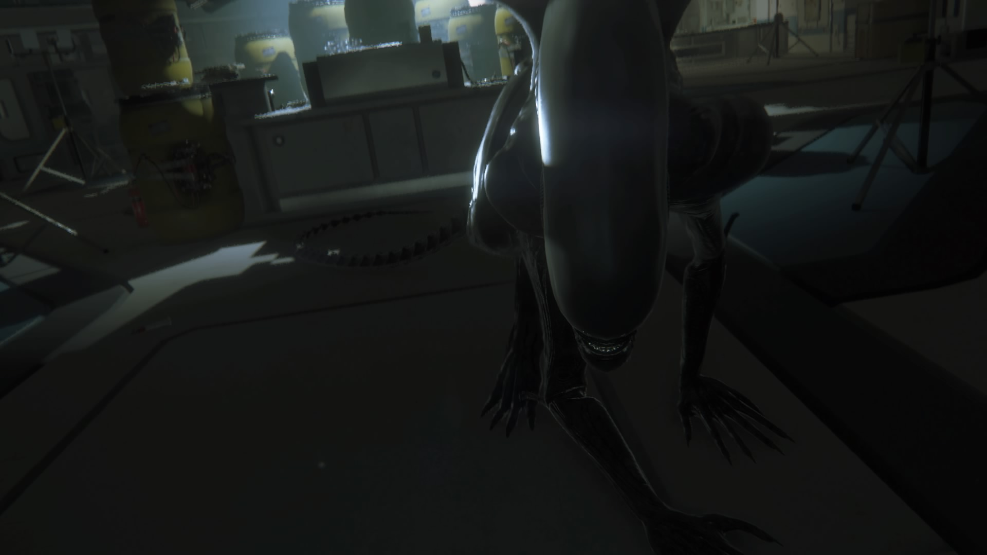 """The Xenomorph """"sneaking up"""" on the player!"""