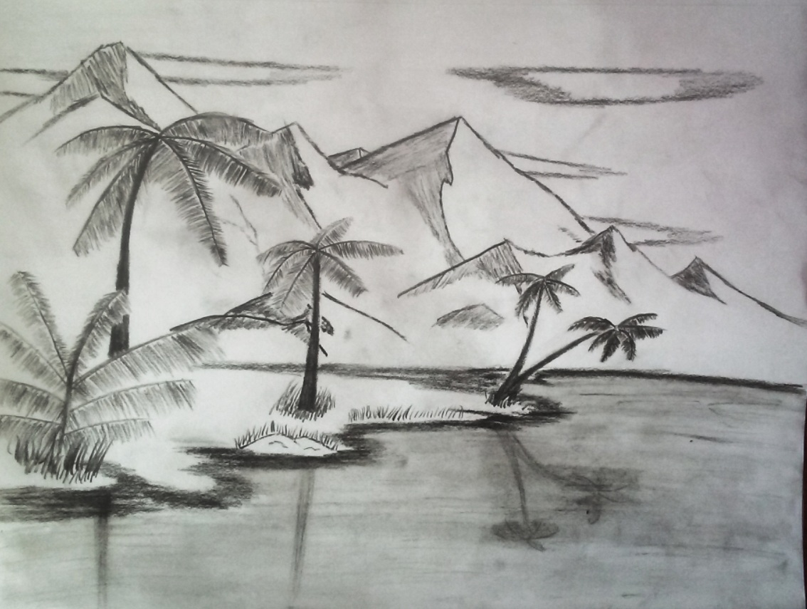 nature sketch, beach, ocean, palm trees, trees, leafs, mountains, sky, clouds, black and white, pencil, nature