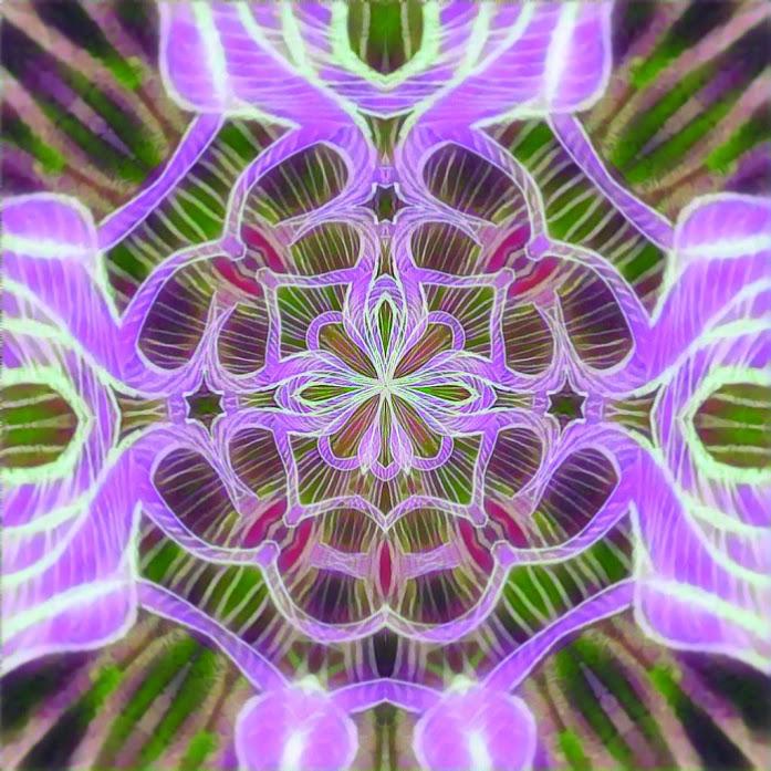 Purple Flower Knots
