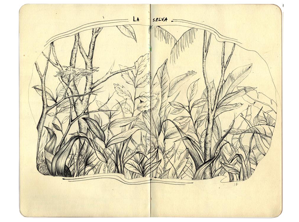CostaRicaSketchbook2.jpg