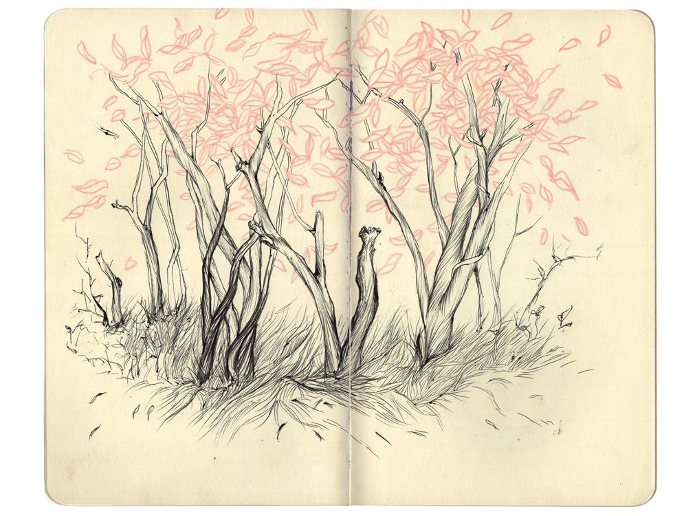 CostaRicaSketchbook14.jpg