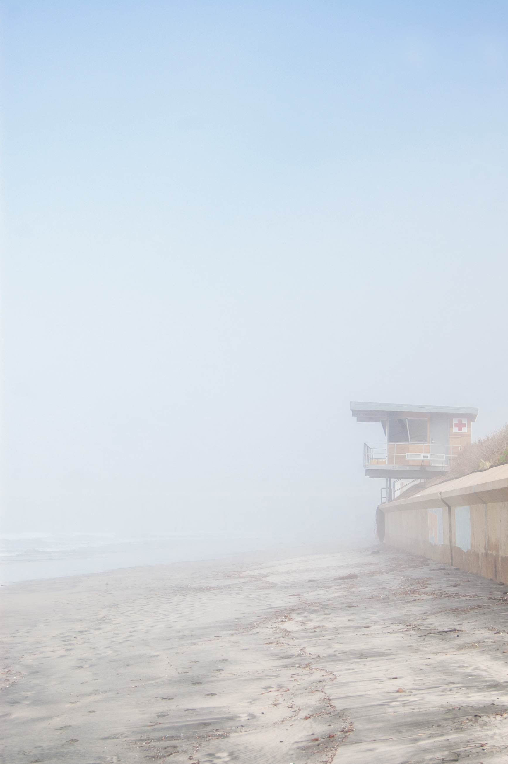 It was pretty foggy when we first got to Scripps Beach.