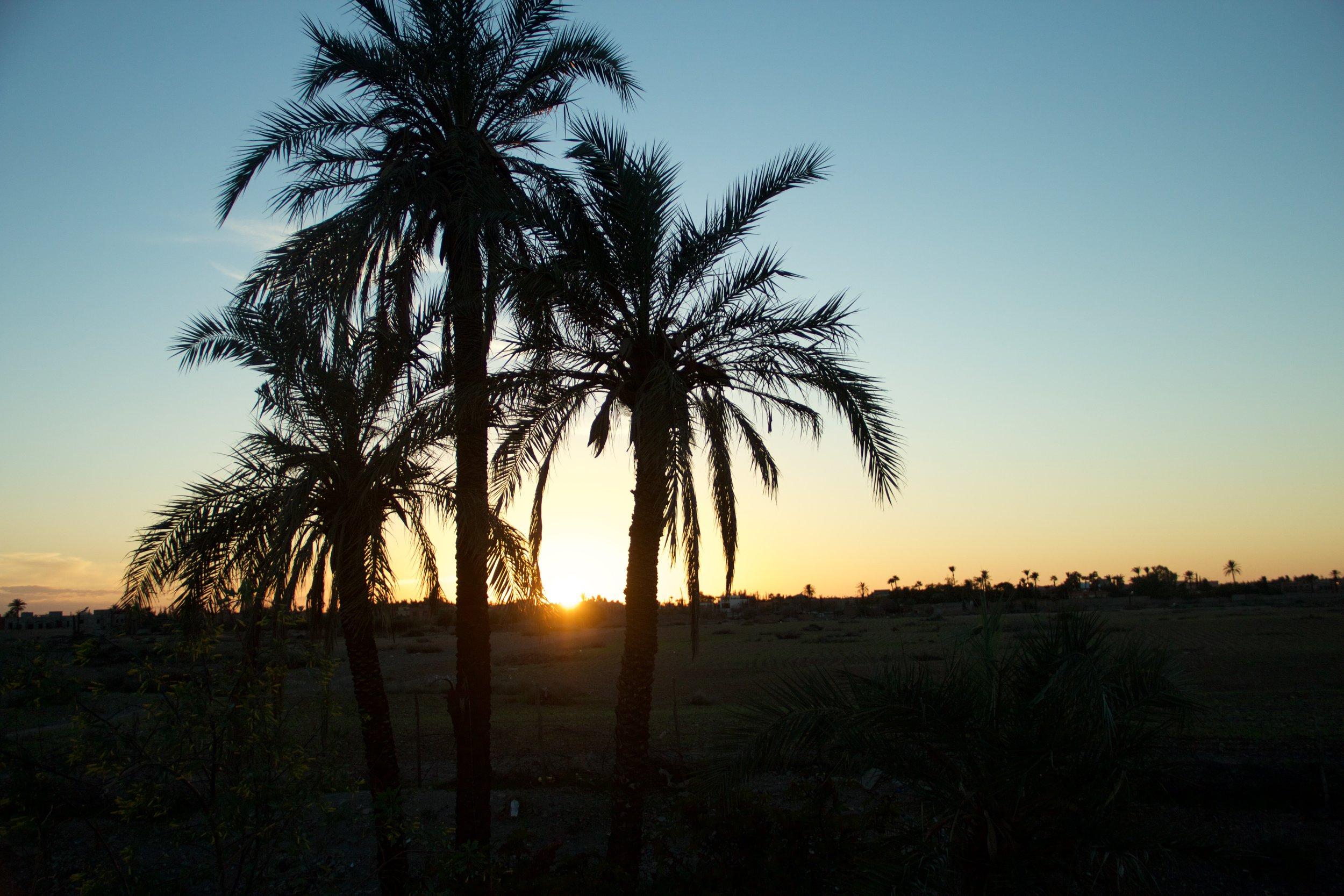 MARRAKECH - sun, sand, and souk