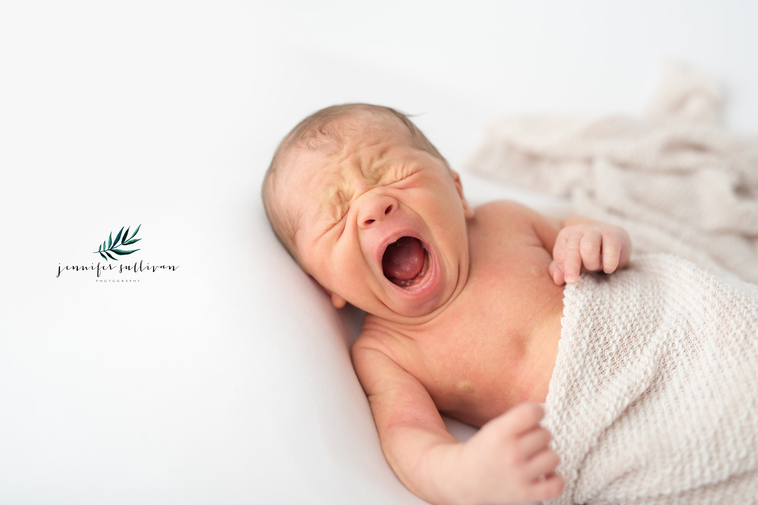 dartmouth baby photographer newborn-401-5.jpg