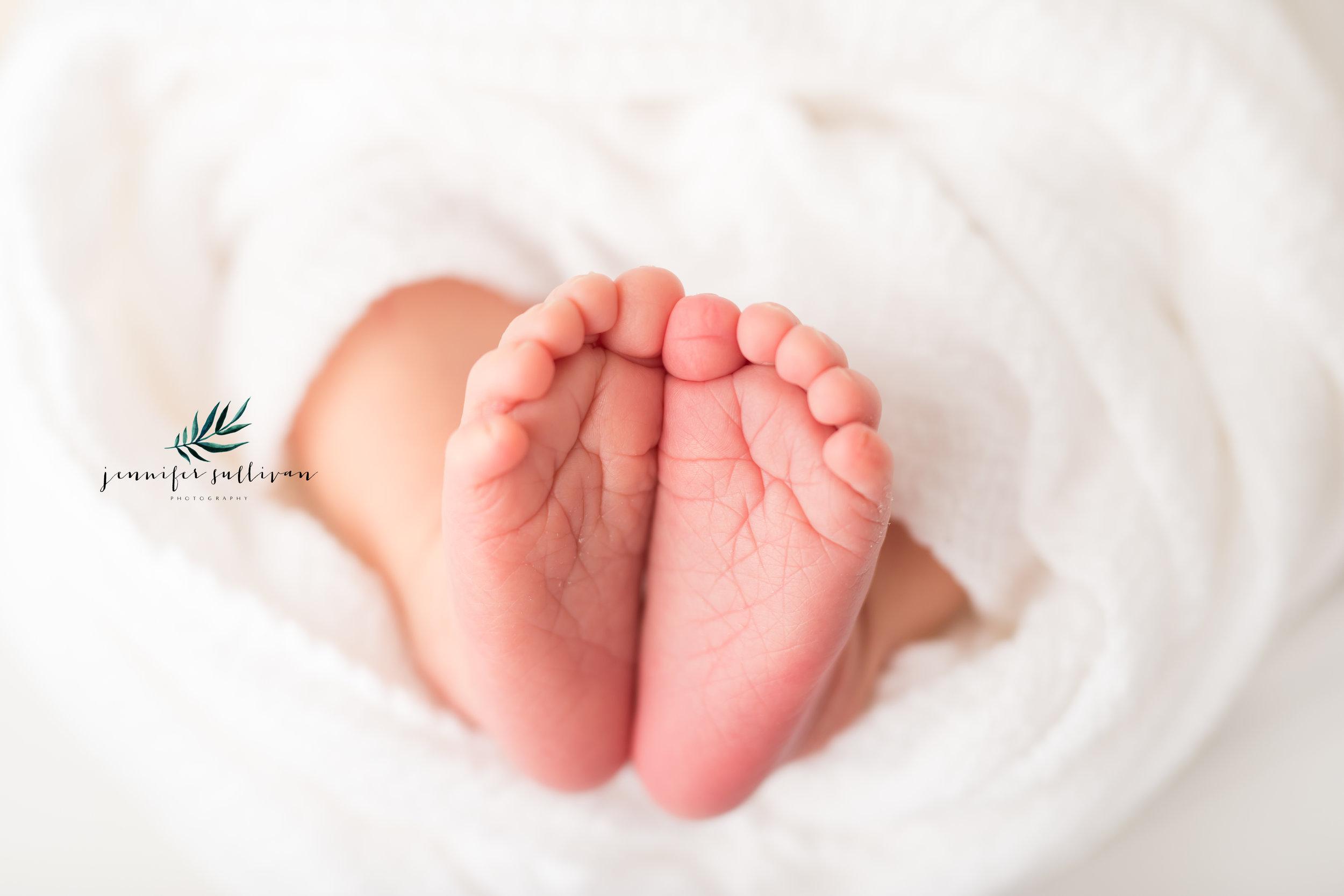 dartmouth baby photographer newborn-406.jpg